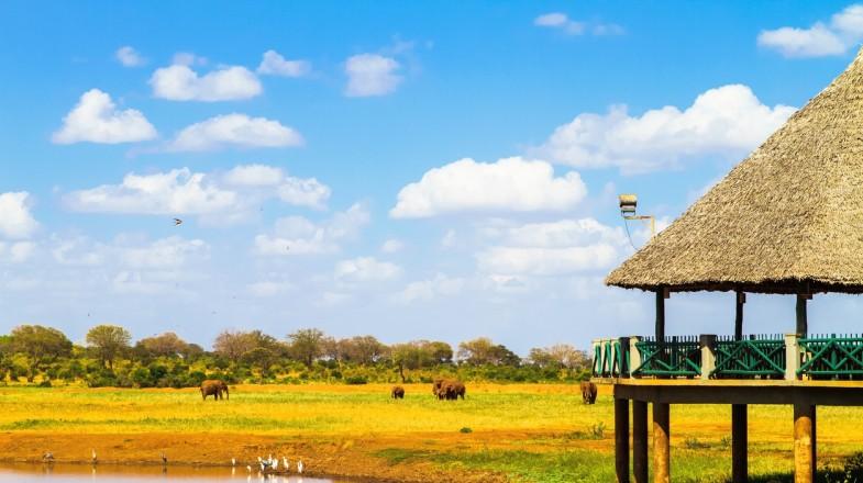 Luxury safari lodge in Africa
