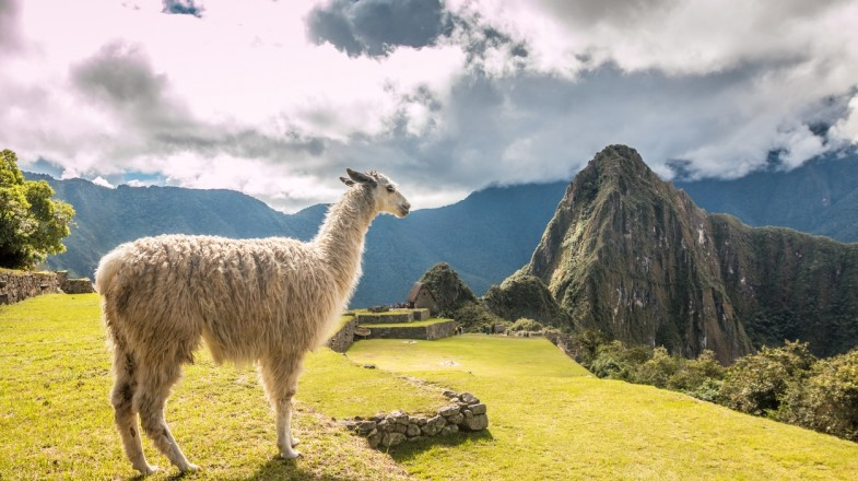 Lares trek vs the Inca Trail is a classic dilemma faced by trekkers in Peru