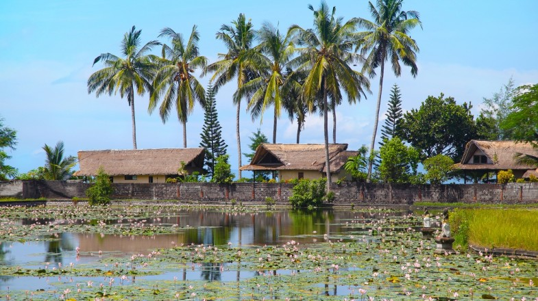 The Lotus Lagoon is a refreshing spot to relax in Candidasa.