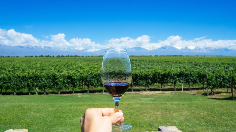 Mendoza wine tours take you to the lively city of Mendoza situated to the east of Mount Aconcagua.