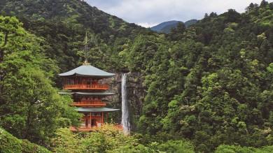 The Kumano Kodo trail is a network of beautiful, ancient trails leading to the grand Kumano Sanzan.