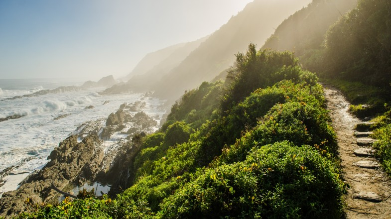 Located entirely inside the Tsitsikamma National Park, the Otter trail is right in the middle of the famous Garden Route.