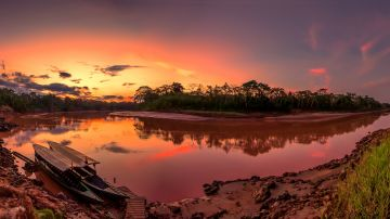 The Peruvian Amazon, the fourth largest rainforest in the world, possesses astounding diversity