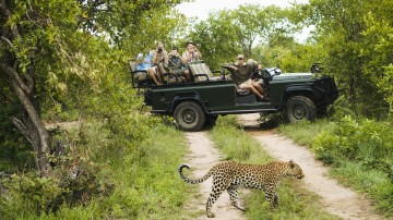 South Africa houses 21 National Parks, together covering 4,000,000 hectares or over 3% of the country's total area.