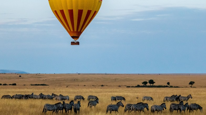 Masai Mara national park is a must see place while in Kenya.