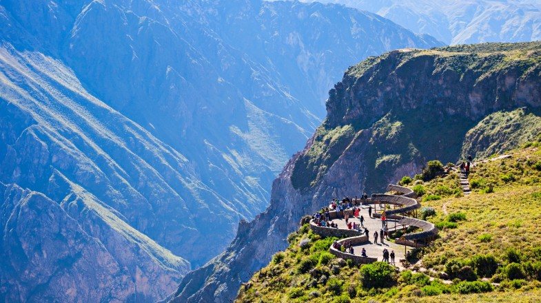 Plan a visit to the Colca Canyon to watch the majestic flight of the condor from the Cruz Del Condor viewpoint.