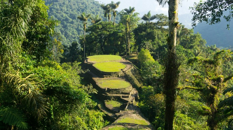 The Lost City Trek is one of the best treks in Colombia