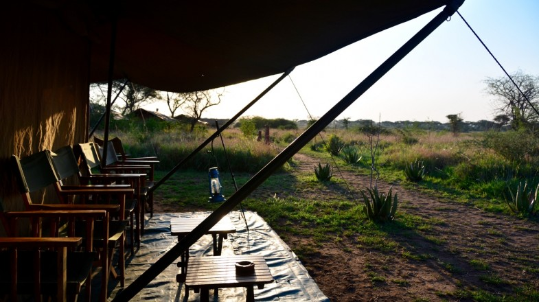 Bookmundi presents the top Serengeti hotels and lodges to choose from.