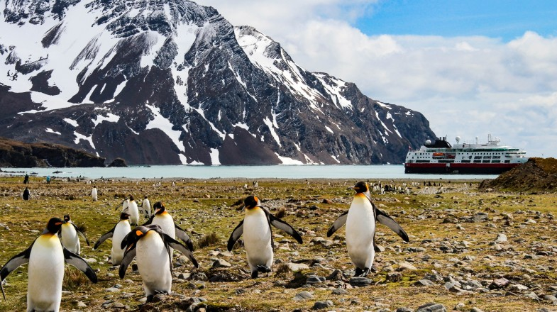 A trip to Antarctica is a bucket list item for serious travellers.