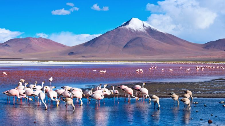 Tours and Holidays in Bolivia