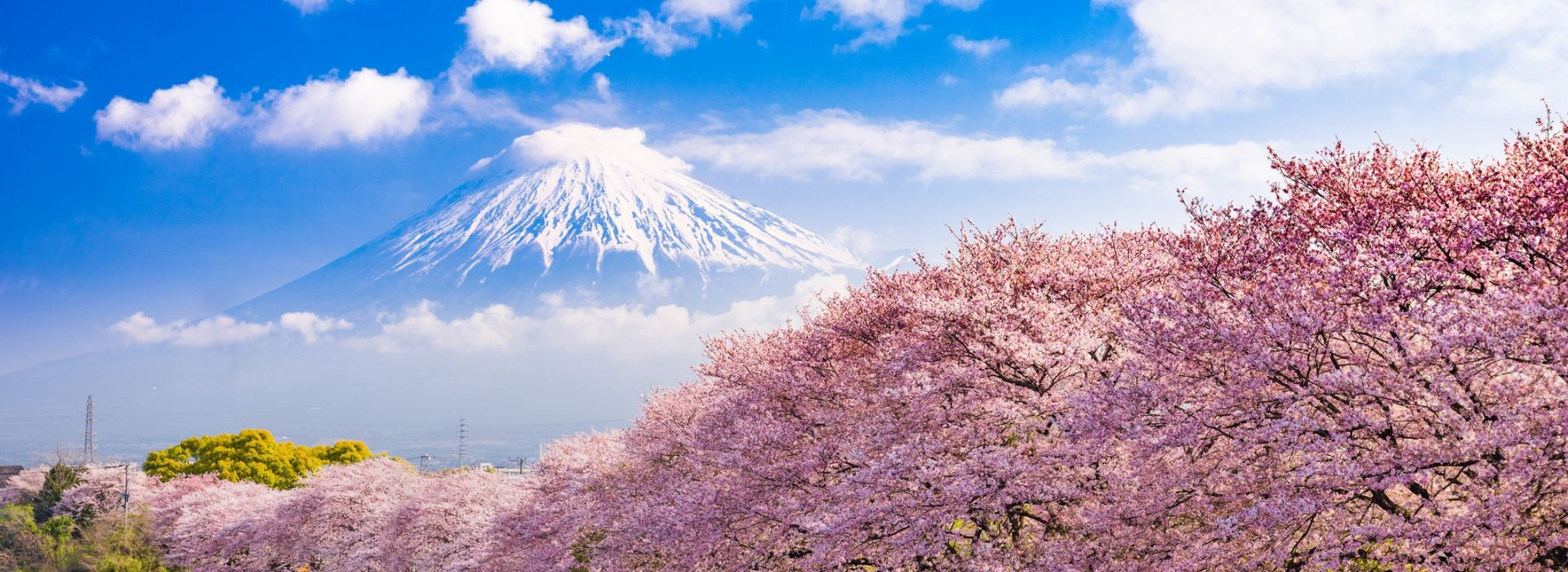 95 best japan tours holiday packages 2018 2019 compare prices