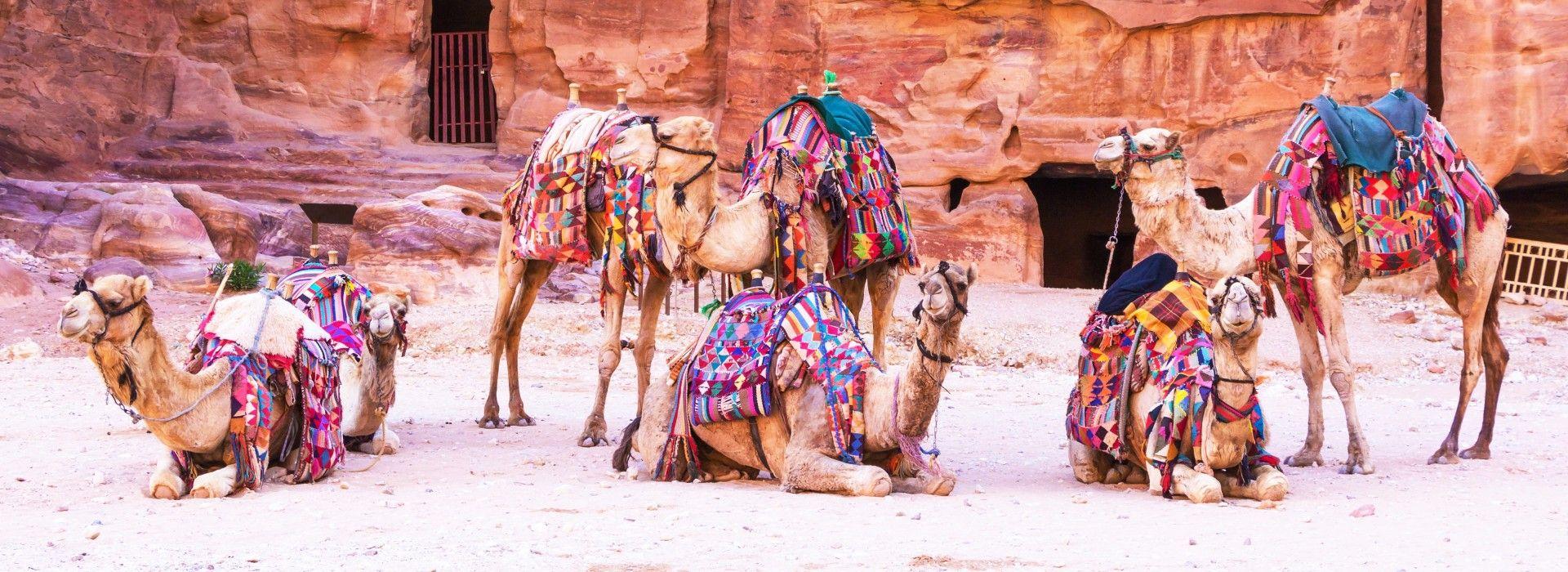 Adventure tours in Jordan