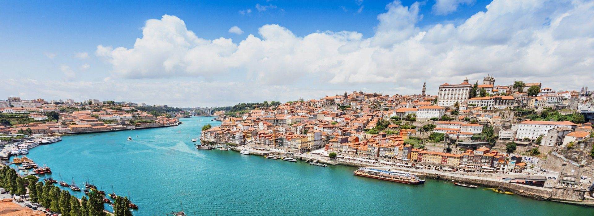 Boat tours, water sports and marine wildlife in Lisbon
