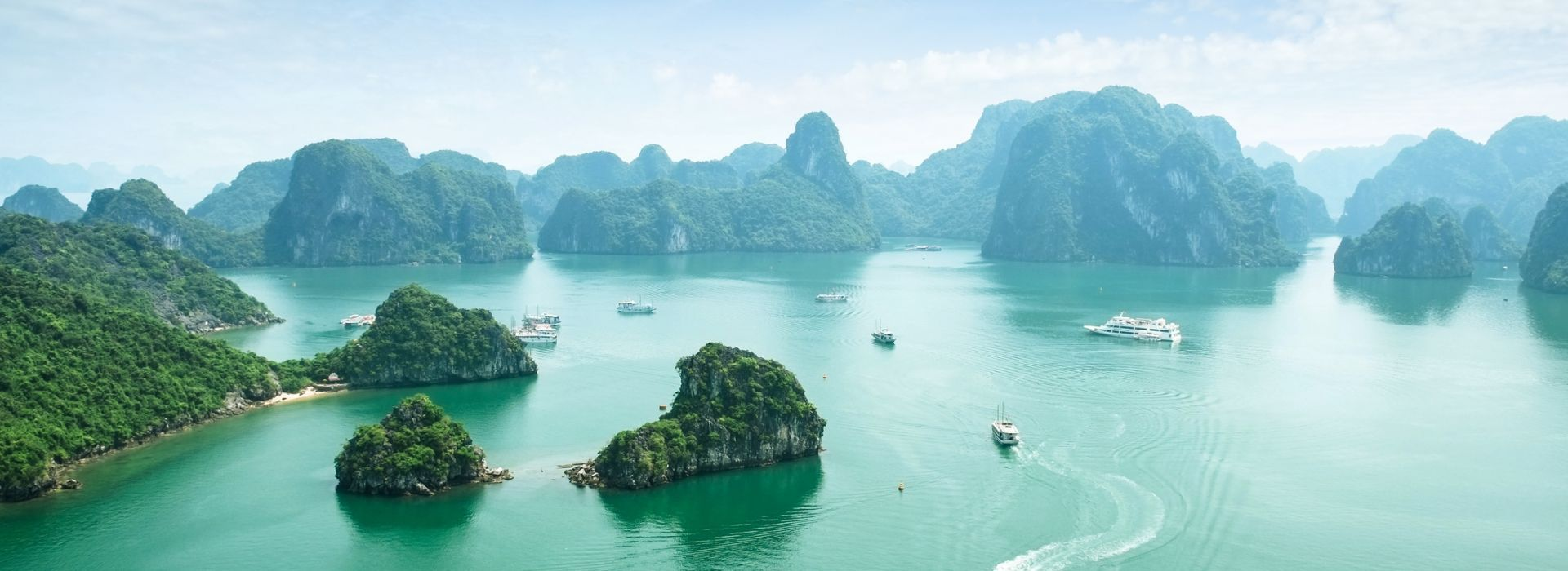 Boat tours, water sports and marine wildlife in Vietnam