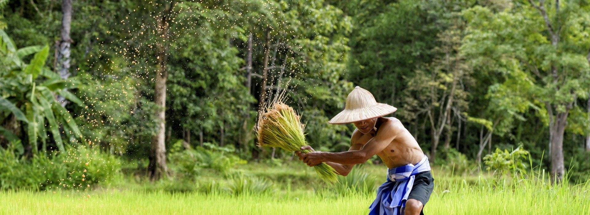 Countryside and village visits Tours in South East Asia