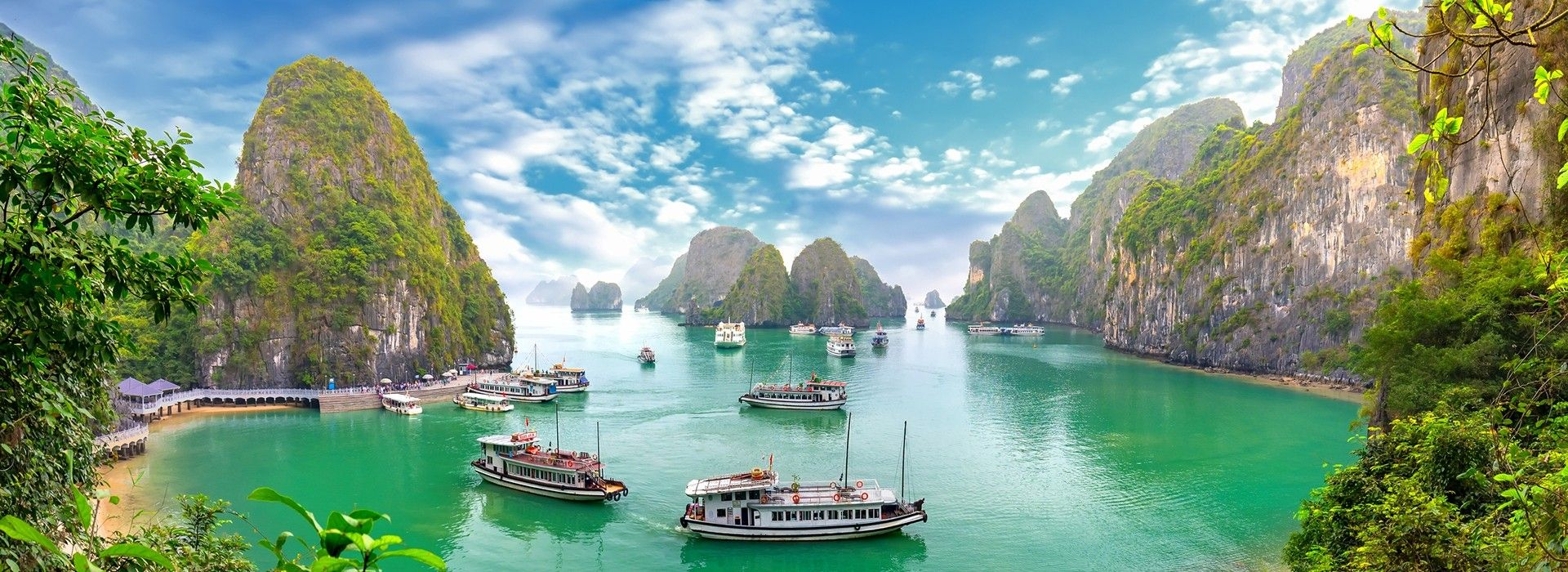 Halong Bay Cruises and Tours