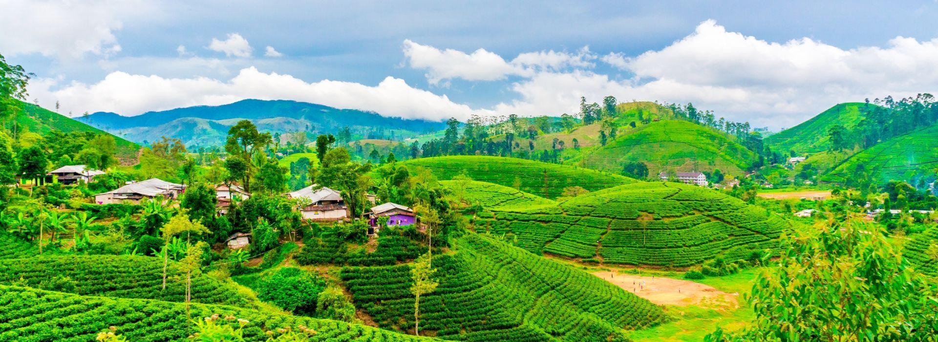 Natural landmarks sightseeing Tours in Kandy