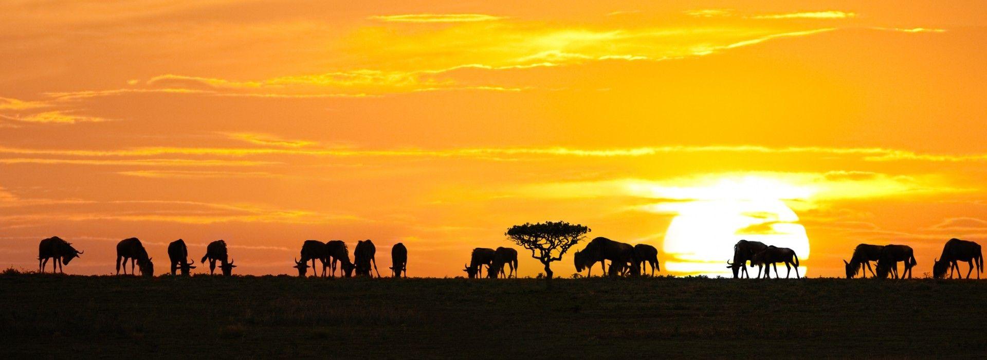 Natural landmarks sightseeing Tours in Tanzania Safari Parks