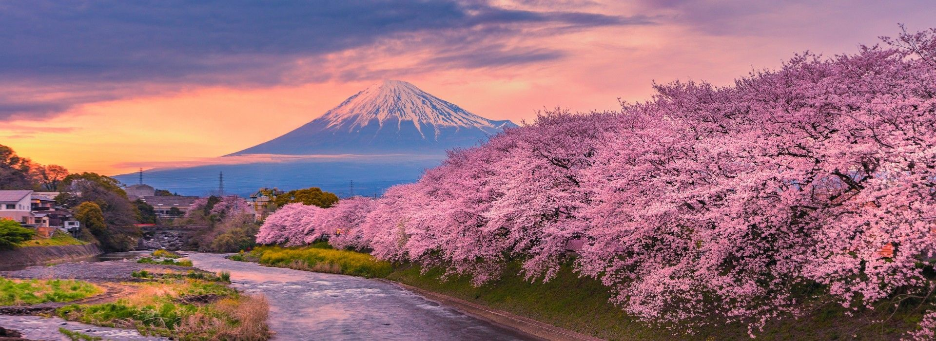 Train tours in Japan