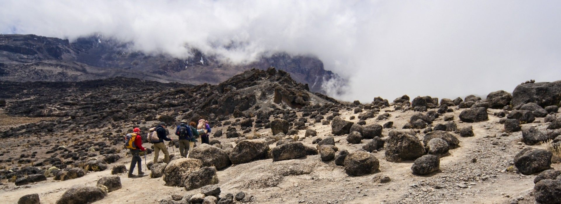 Trekkers climbing Kilimanjaro via the Lemosho route