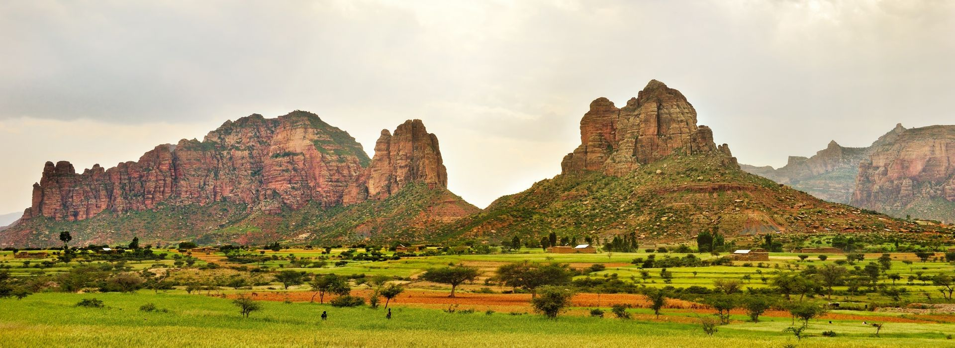 Wildlife, landscapes and nature Tours in Ethiopia