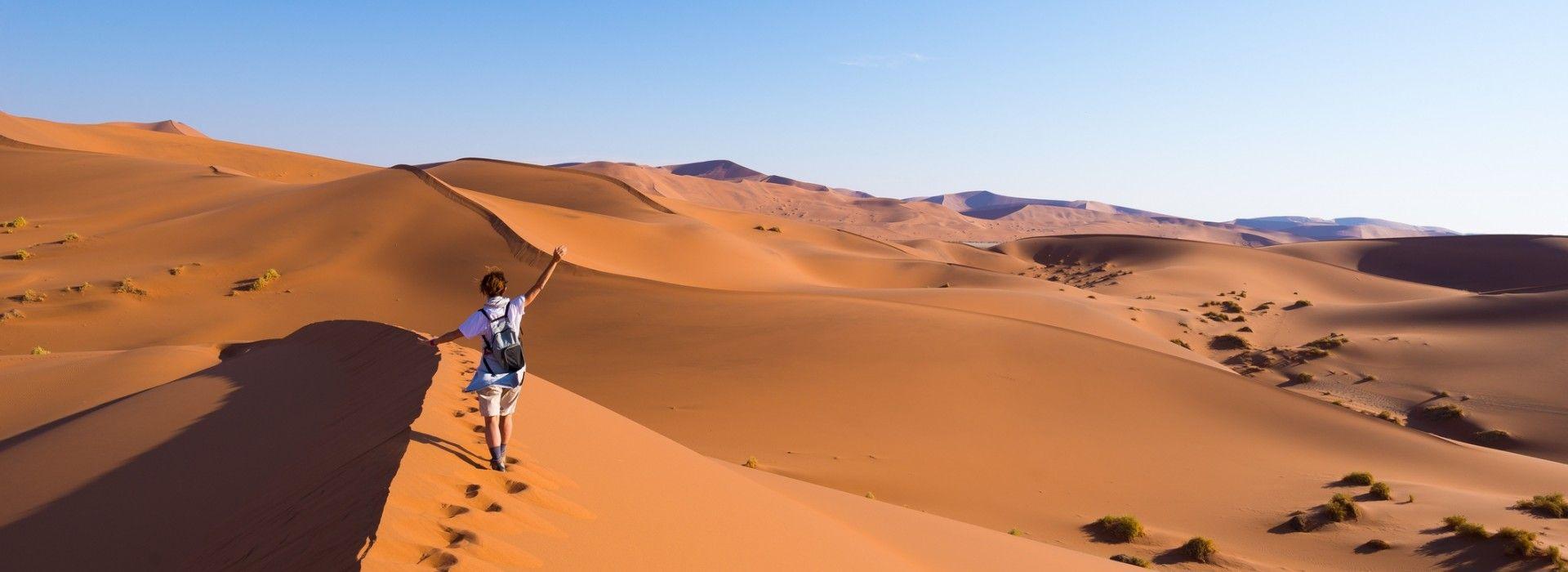 Wildlife Tours in Namib Desert