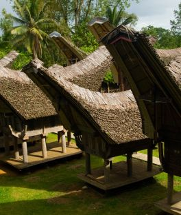 Sulawesi Tours