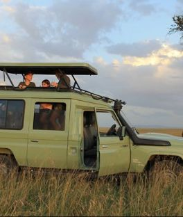 Northern Safari Circuit Tours