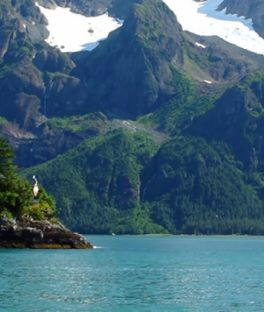 Anchorage Tours