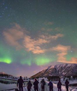 Nordland Tours