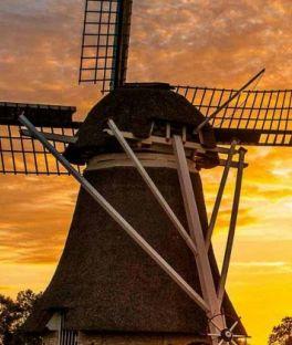 Holland Tours