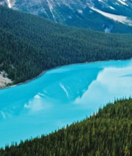Yoho National Park Tours