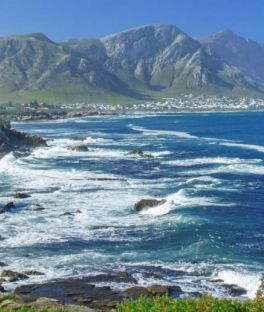 Hermanus Tours