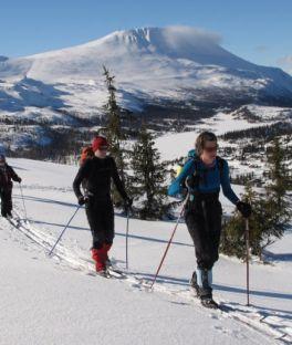 Telemark Tours