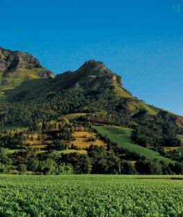 Paarl Tours