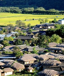 Hahoe Folk Village, Andong Tours