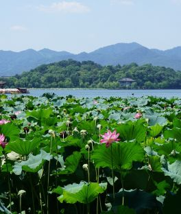 West Lake and Hangzhou Tours