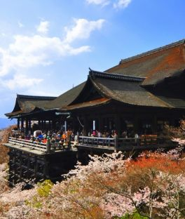 Hakone Tours