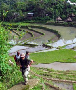 Banaue Tours