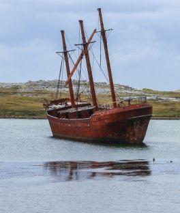 Falkland Islands Tours