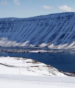 Reykjanesbær Tours