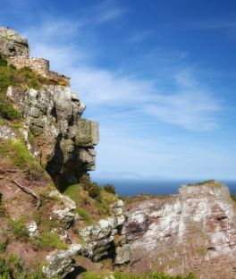 Cape Peninsula Tours