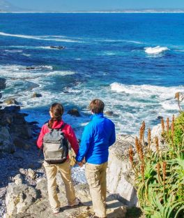 Garden Route National Pak Tours