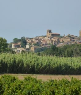 Calella De Palafrugell Tours