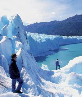 Punta Arenas Tours