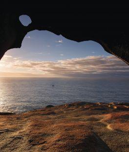 Coffin Bay Tours