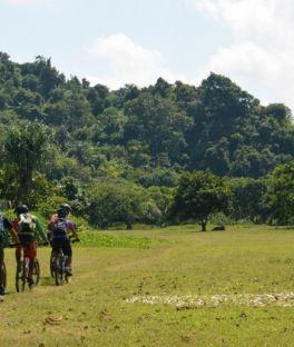 Lombok Tours