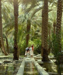 Al Ain Tours