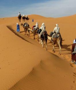 Ouarzazate Tours