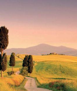 Tuscany Tours